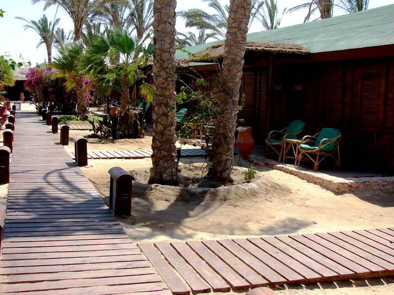 Фото 13. Марса Алам, Эль Кусейр, Египет.